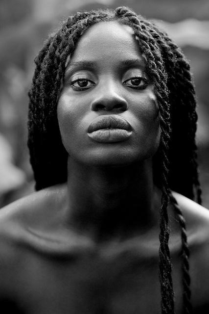 Black ebony image