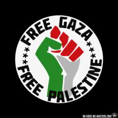 zip-hoodie-free-gaza-free-palestine-d0012330889.png